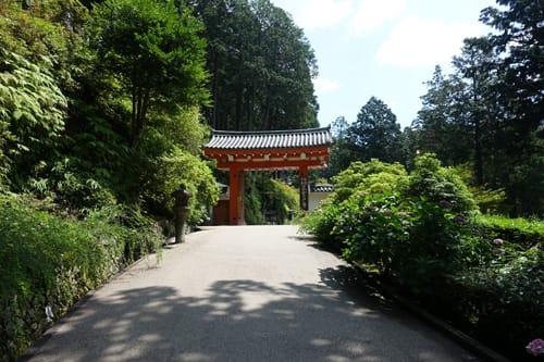 京男雑記帳