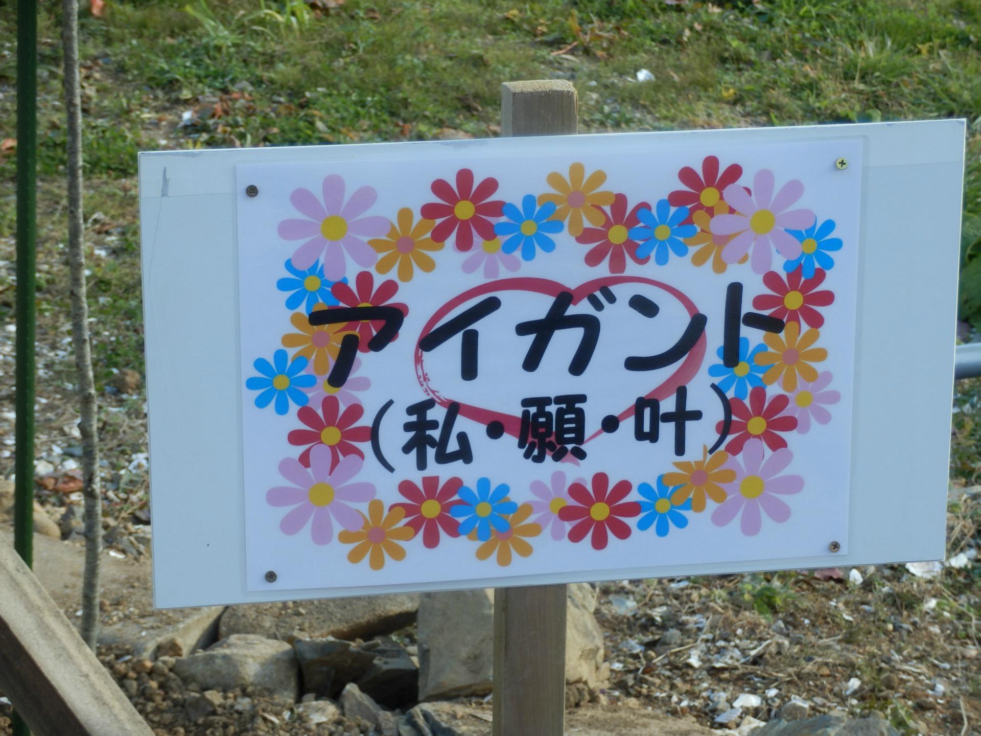 コハル (ポケットモンスター・テレビアニメ第7シリーズ)の画像 p1_28