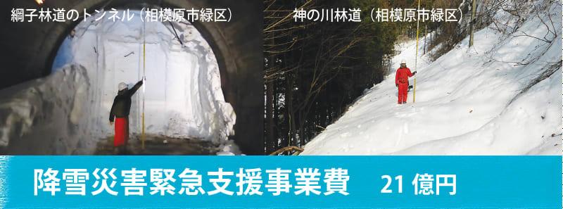 降雪災害緊急支援事業費 近藤だいすけ県議会ニュースvol.20
