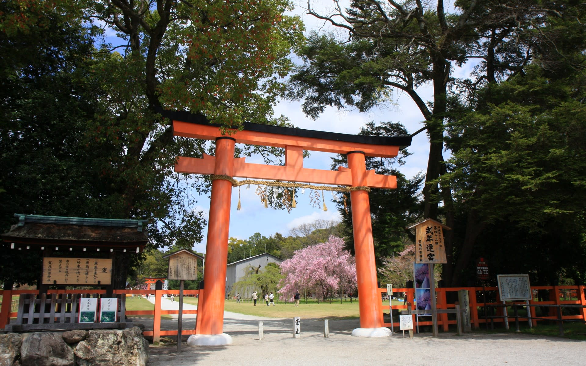 京都 上賀茂神社の桜の壁紙 計29枚 壁紙 日々駄文