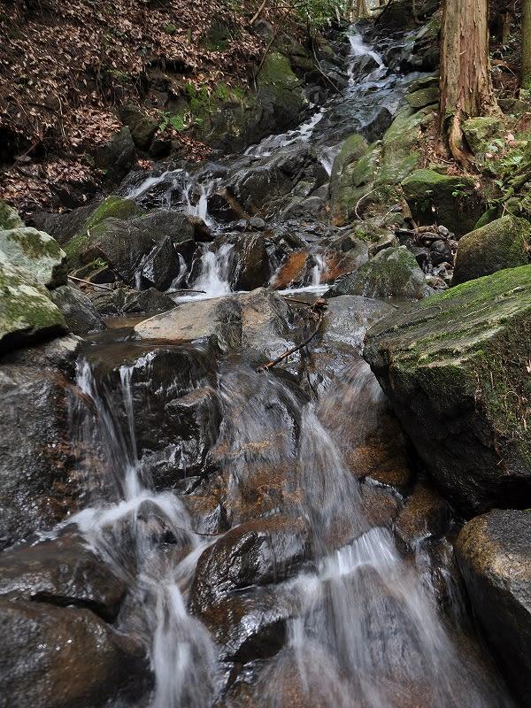 下から細滝川