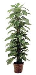 ポトス フェイクグリーン 人工観葉植物造花