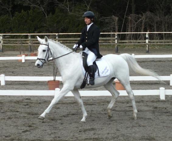 第1戦(1) - 競馬学校・騎手・厩務員受験サポート、牧場・乗馬クラブ就職 馬の学校 『アニマル