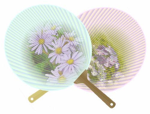 紫陽花の団扇 2種
