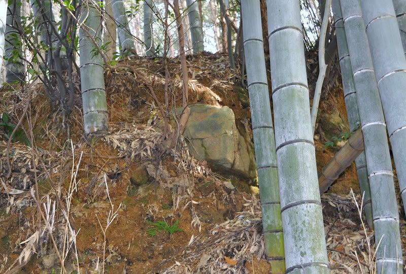 天王山露出石材