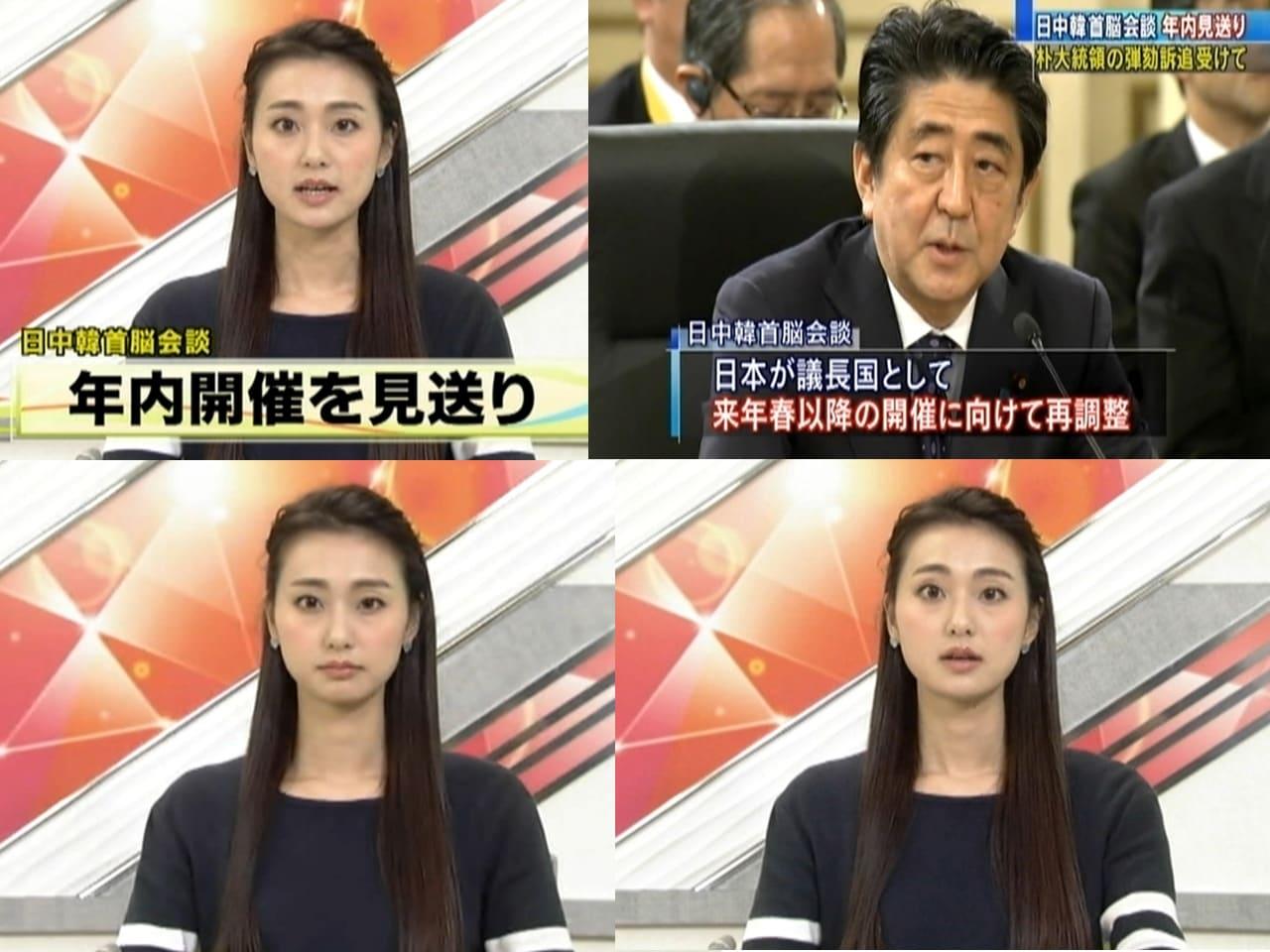 『テレビ』 ジャンルのランキング コメント 本間 智恵 日中韓首脳会談・年内開催を見送り