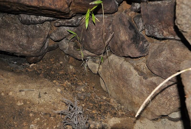 米谷塚穴南古墳石室内