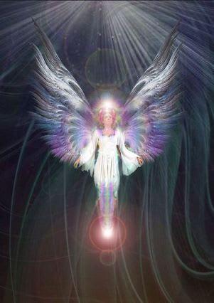 天使の画像 p1_19