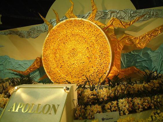 太陽の神 「アポロン」  世界らん展日本大賞2007 ギリシャ神話にみるランの世界