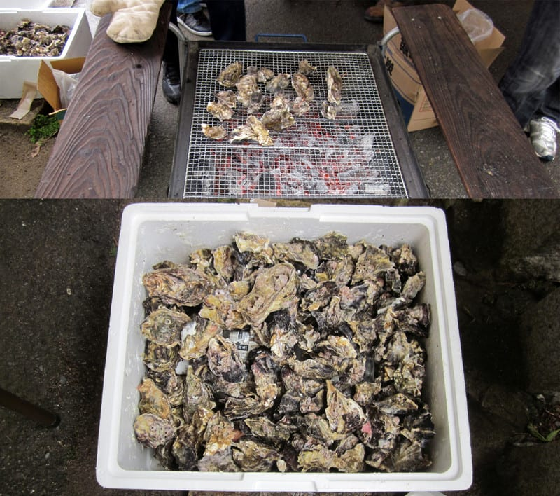 Oyster_bbq