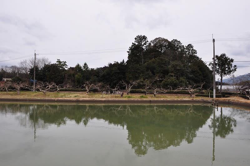 宇智陵全景