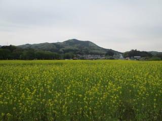 http://blogimg.goo.ne.jp/user_image/07/7d/bb53d4b8c0e61c6109cdcd54698404e3.jpg