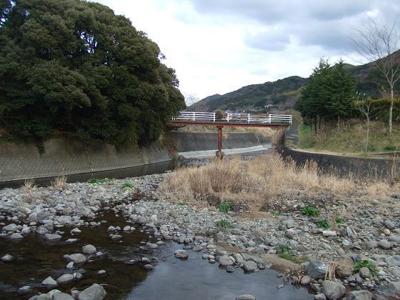 2008_0126shimoda0268