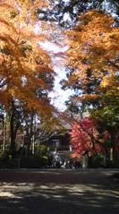 大津に行ってきました