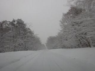 槙原を過ぎて、融雪道路に入るまでの位置。ちなみに、どんぐり村くらいから上は雪。