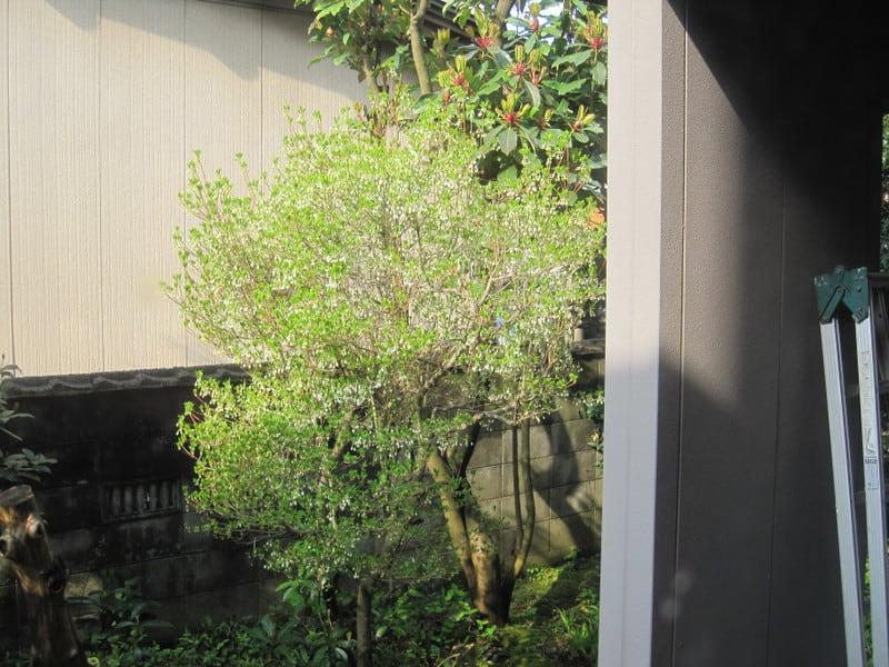 201124_003