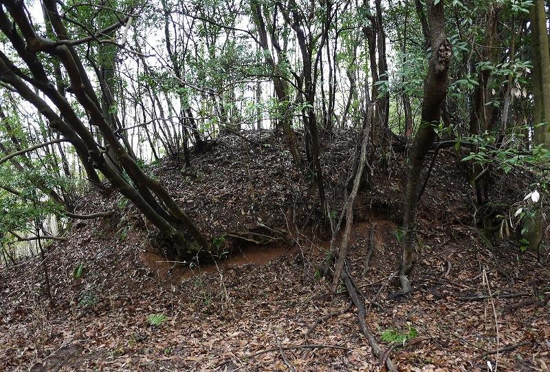 スクテ1号墳の墳丘