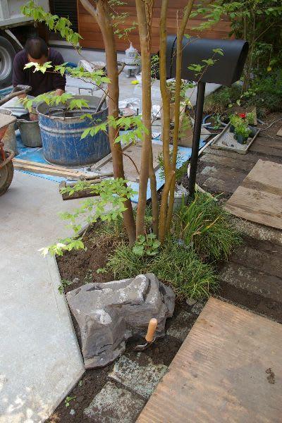 下草の植栽