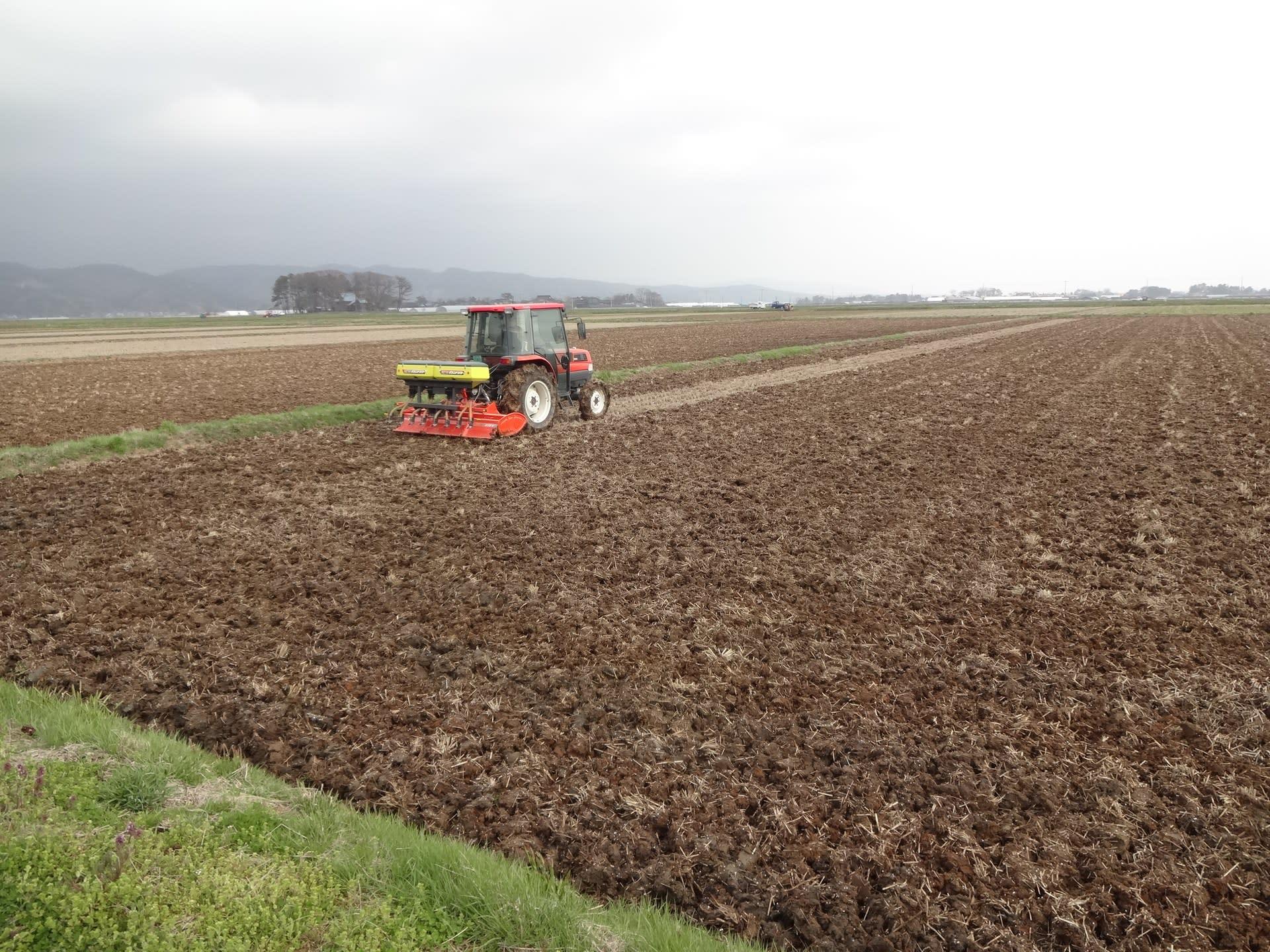 今年も農作業始まる