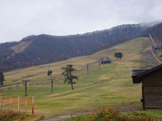昨日と同じくらいなので、今日も雪があるかな?と思いきや、まだ緑。