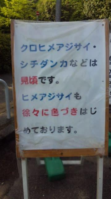 神戸市森林公園