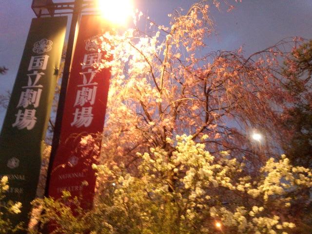 第537回TBS<br />  落語研究会