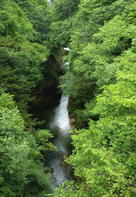 片品川の渓谷