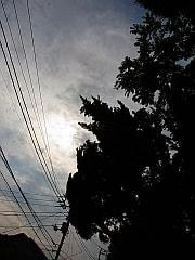 近所で東の空を見上げると…