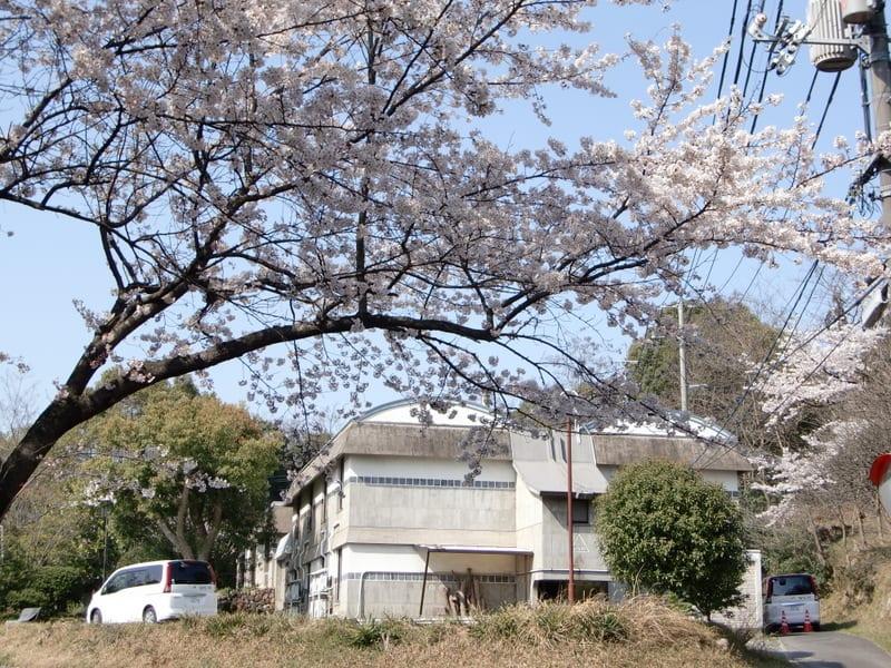 2010年4月のブログ記事一覧-地域...