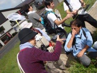 大山チョウの観察会