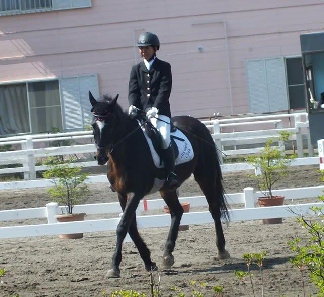 競馬学校・騎手・厩務員受験サポート、牧場・乗馬クラブ就職 馬の学校 『アニマル・ベジテイション・