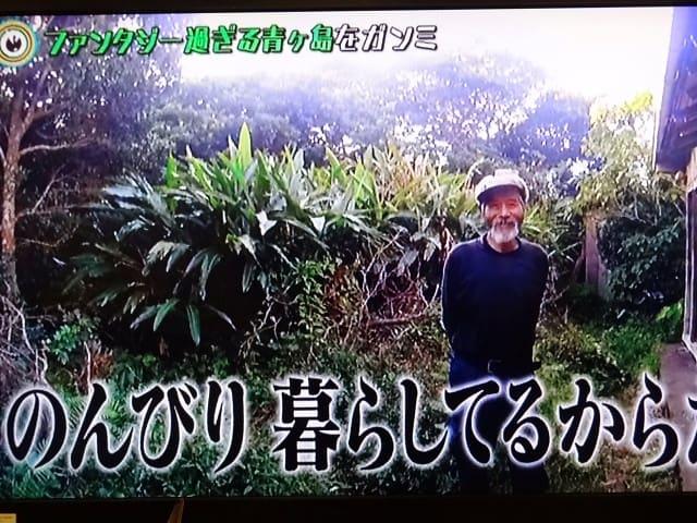 青ヶ島 仙人 画像
