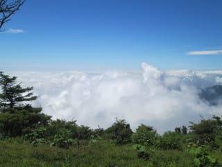 http://blogimg.goo.ne.jp/user_image/0b/d8/d11803d6b3744904522da2806c526b47.jpg