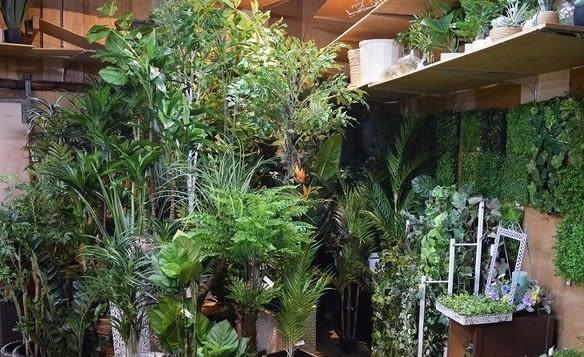 造花人工観葉植物 フェイクグリーンのスパイスグリーン 店舗
