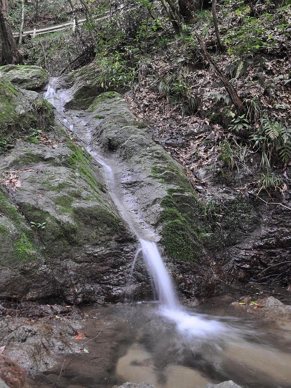 越部川の小滝