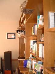 【猫ネタ】猫のためのスタイリッシュなキャットタ …