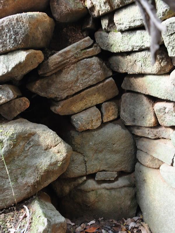向淵さっかの古墳側壁