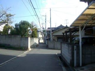 アサムラサキ工場跡地から東方を望む(ミラーの先が丘へ上がる道の入り口となる)