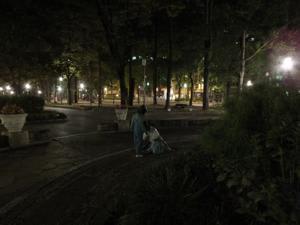 靭(うつぼ)公園界隈 - でん ...