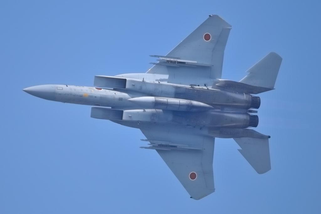 F 15 (戦闘機)の画像 p1_33