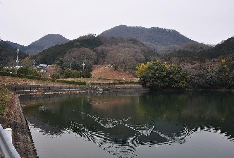 池からの遠景