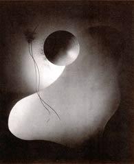 中山岩太の写真展 - 星降るベランダ