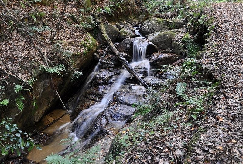 鳴川上流の滑滝