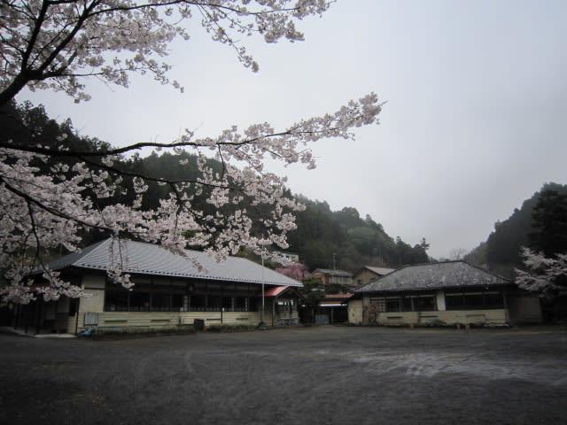 http://blogimg.goo.ne.jp/user_image/0e/56/2378a4a36fc8e0c16aadae9bdaad4a28.jpg