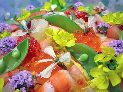 春花の画像 p1_11