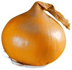 Onion3e_3