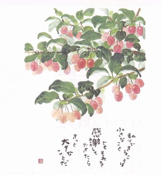 星野富弘の画像 p1_14