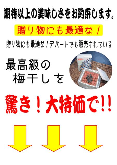 和歌山県 市谷農園の完熟梅干1Kg!送料無料!販売ページへ