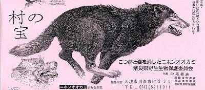 ニホンオオカミの画像 p1_1