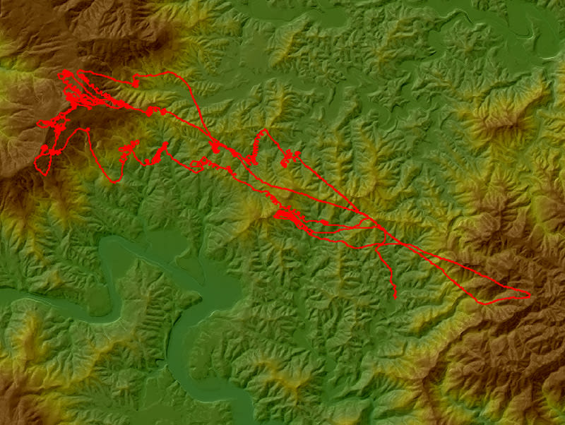 Flightmap_2